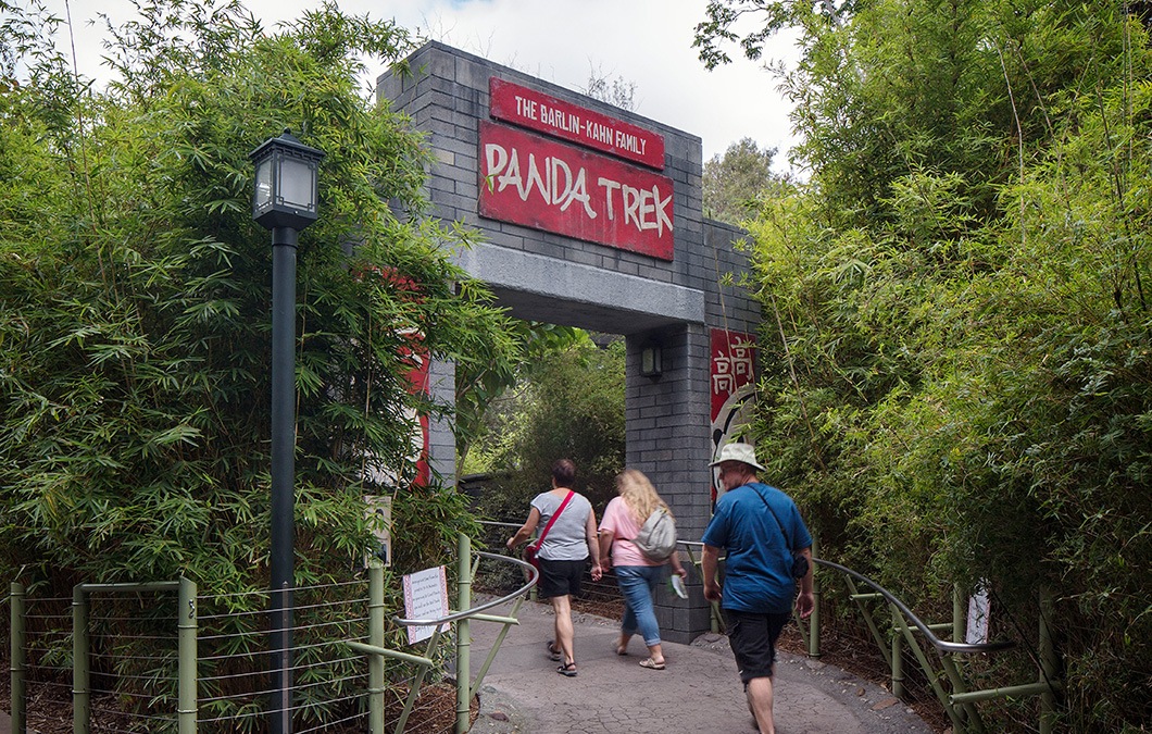 Panda Trek at San Diego Zoo
